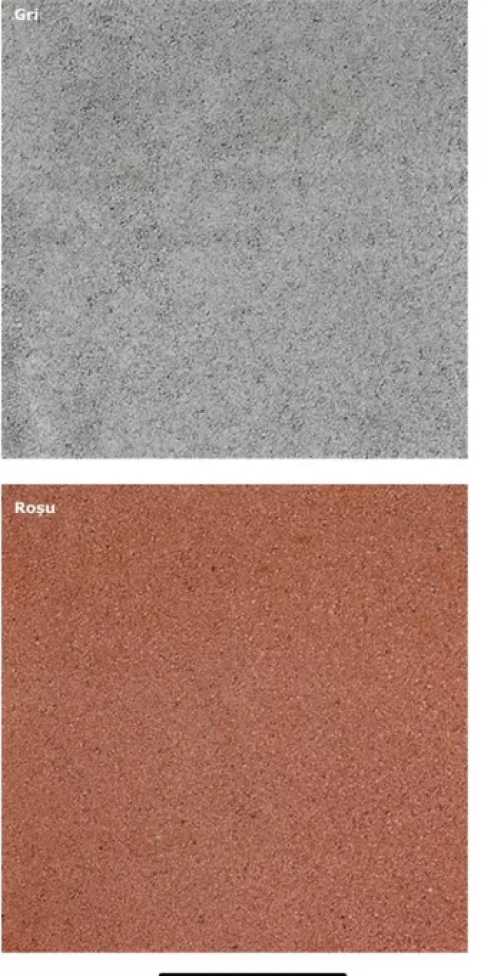 Pavele din beton5292
