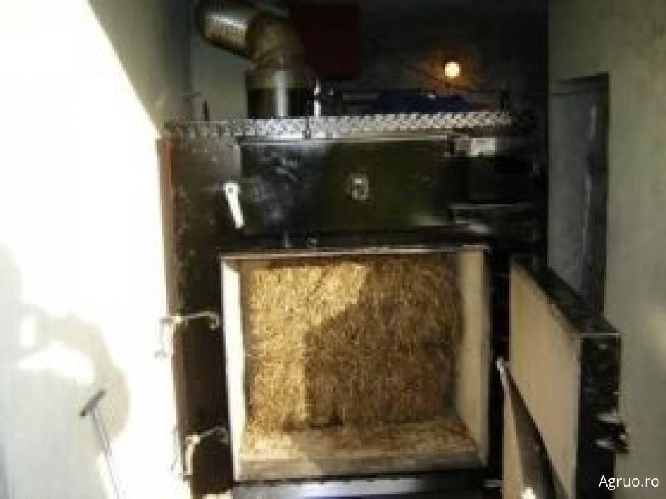 Centrale termice pe biomasa37651
