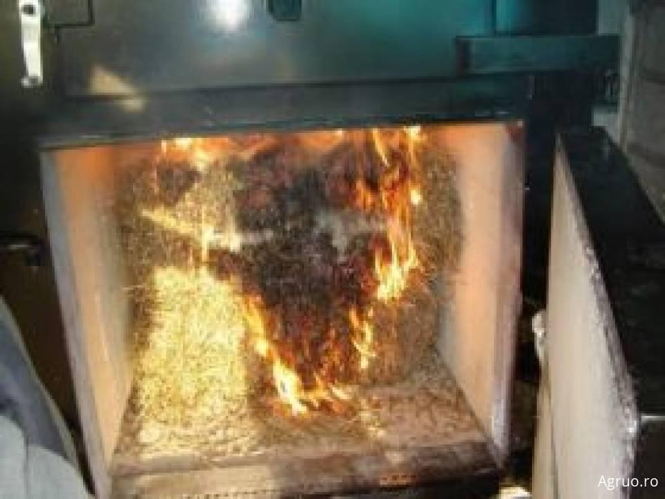 Centrale termice pe biomasa8481