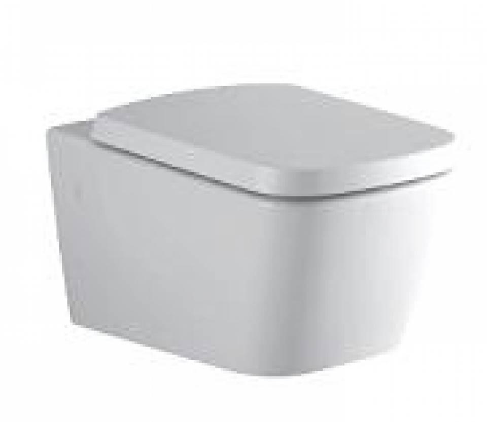 Vas wc suspendat42572