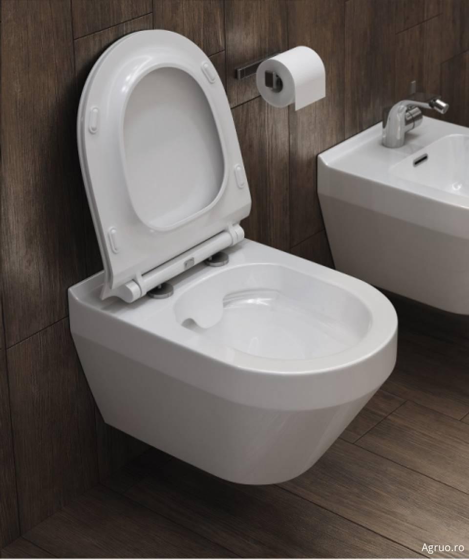 Vas wc suspendat42573