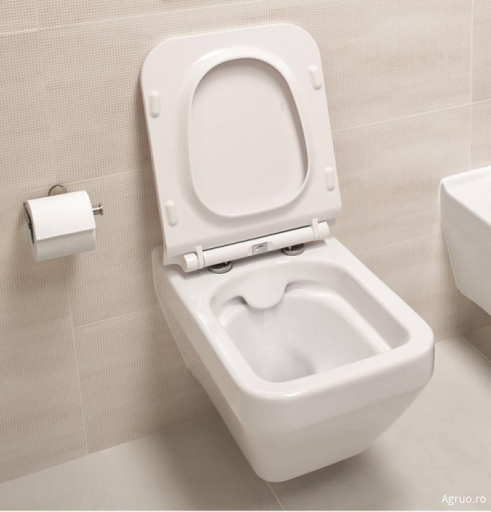 Vas wc suspendat42575