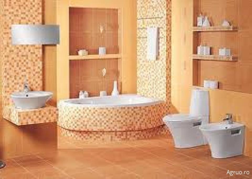 Instalatii sanitare51026