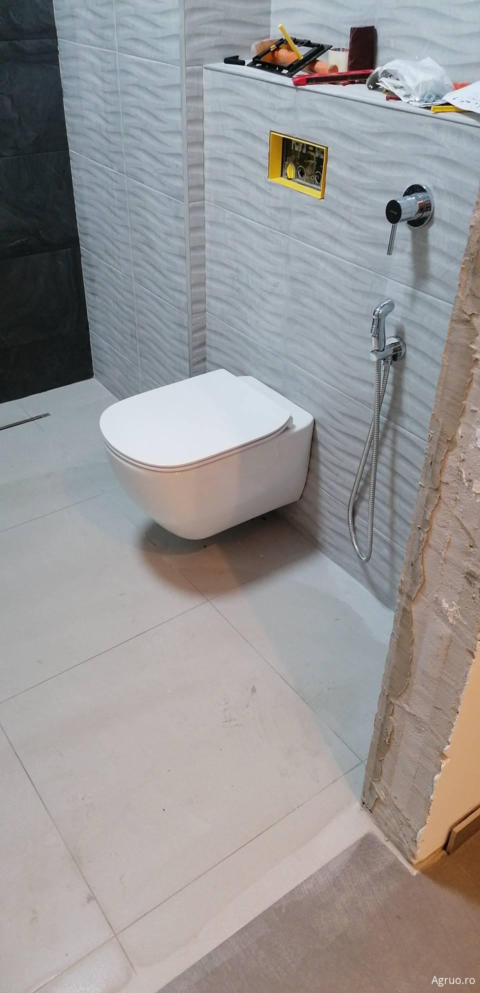Montaj accesorii sanitare51048