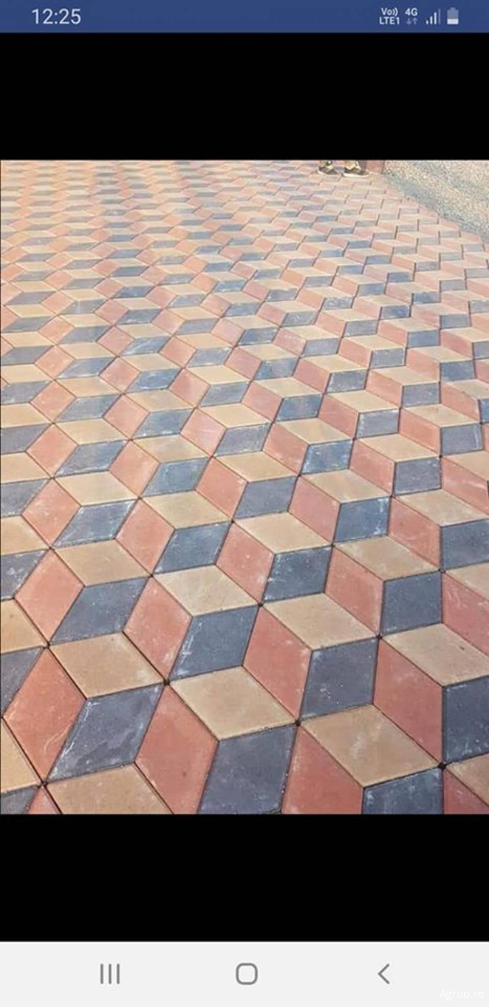 Pavele din beton1764